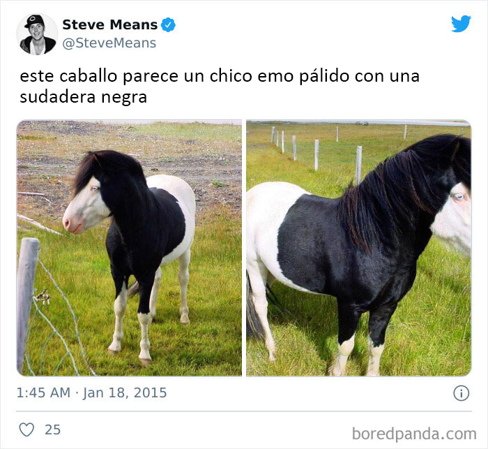 Gracias, odio a este caballo emo