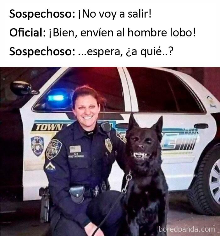 Gracias, odio a los hombres lobo policía
