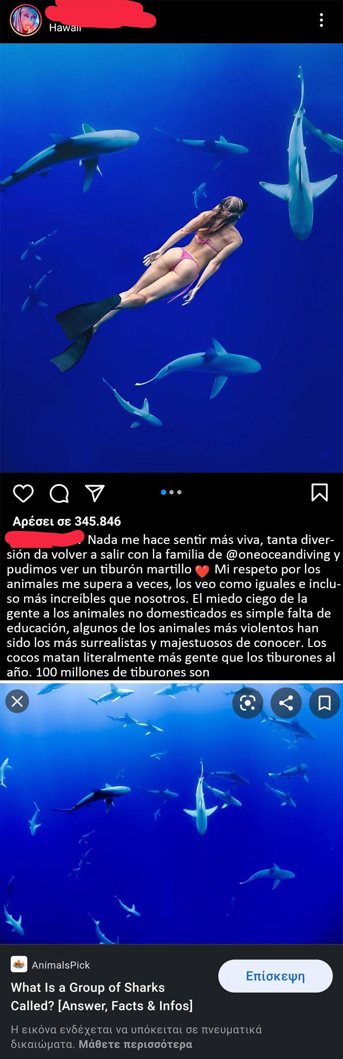 Supongo que fingir nadar con tiburones es lo último ahora, robando descaradamente una imagen de fondo de Internet