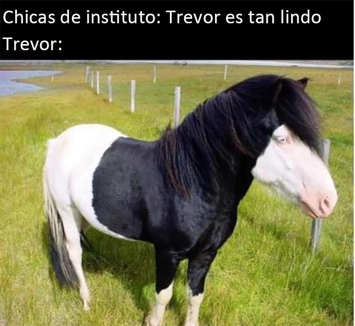 Tienes que amar a Trevor, el Pony Emo