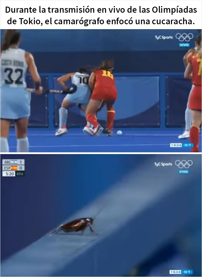 45 Of Funniest Olympic Memes From The Tokyo Games