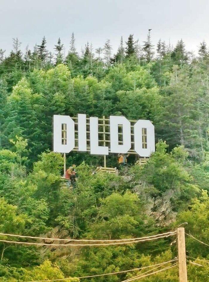 La Ciudad De Dildo, En Terranova, Canadá, Acaba De Poner Un Nuevo Cartel