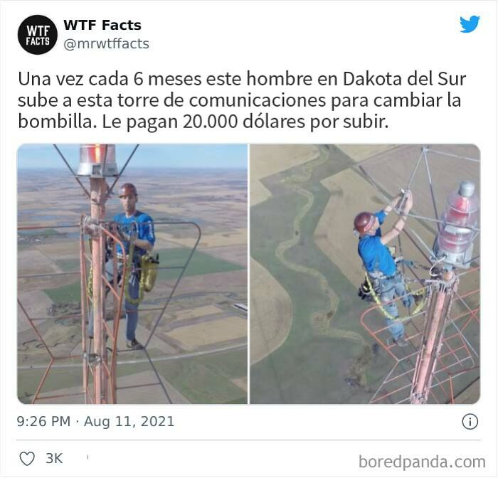 This Twitter Page Posts Random Interesting Facts, And Here Are 40 Of The Best Ones (New Pics)